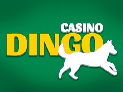 Tangkapan Casino Dingo